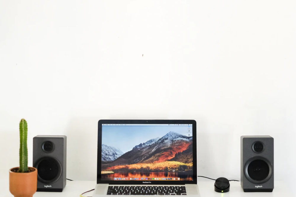 a cactus on a minimalist desk with audio speakers and a video monitor